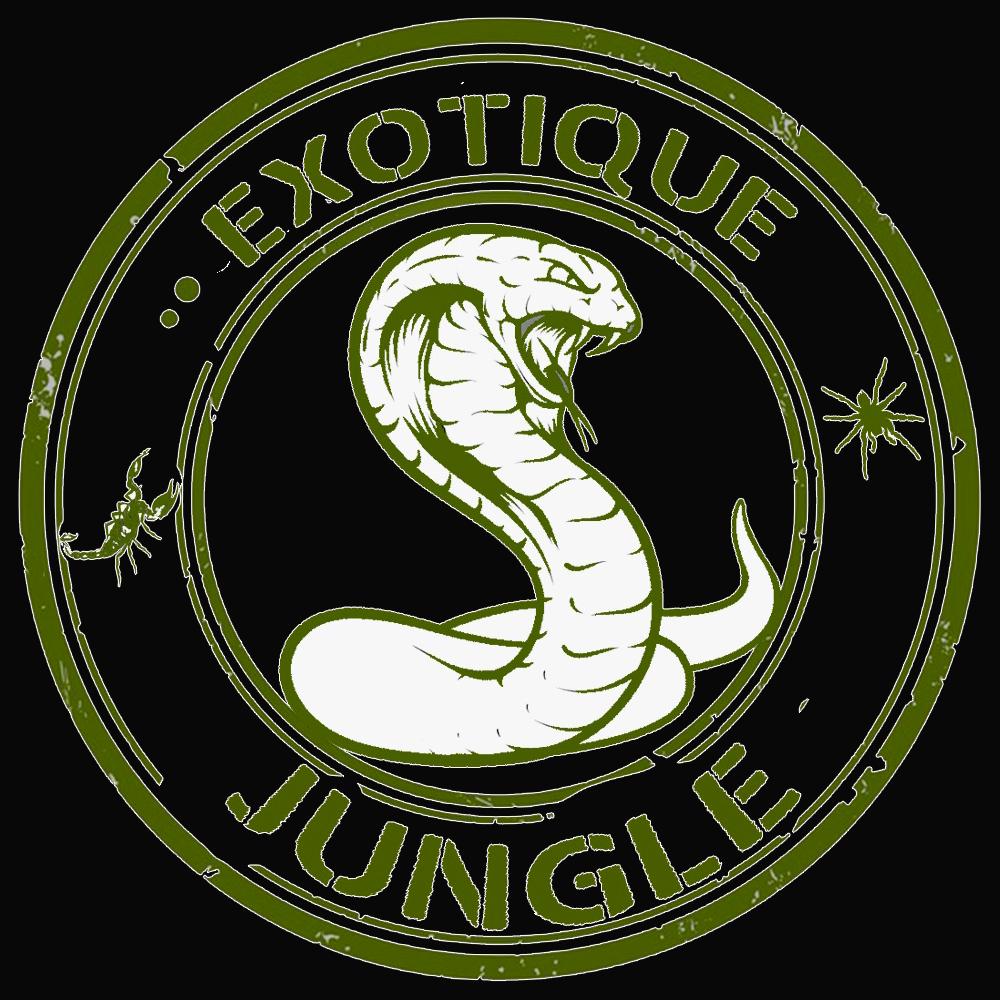Exotique jungle